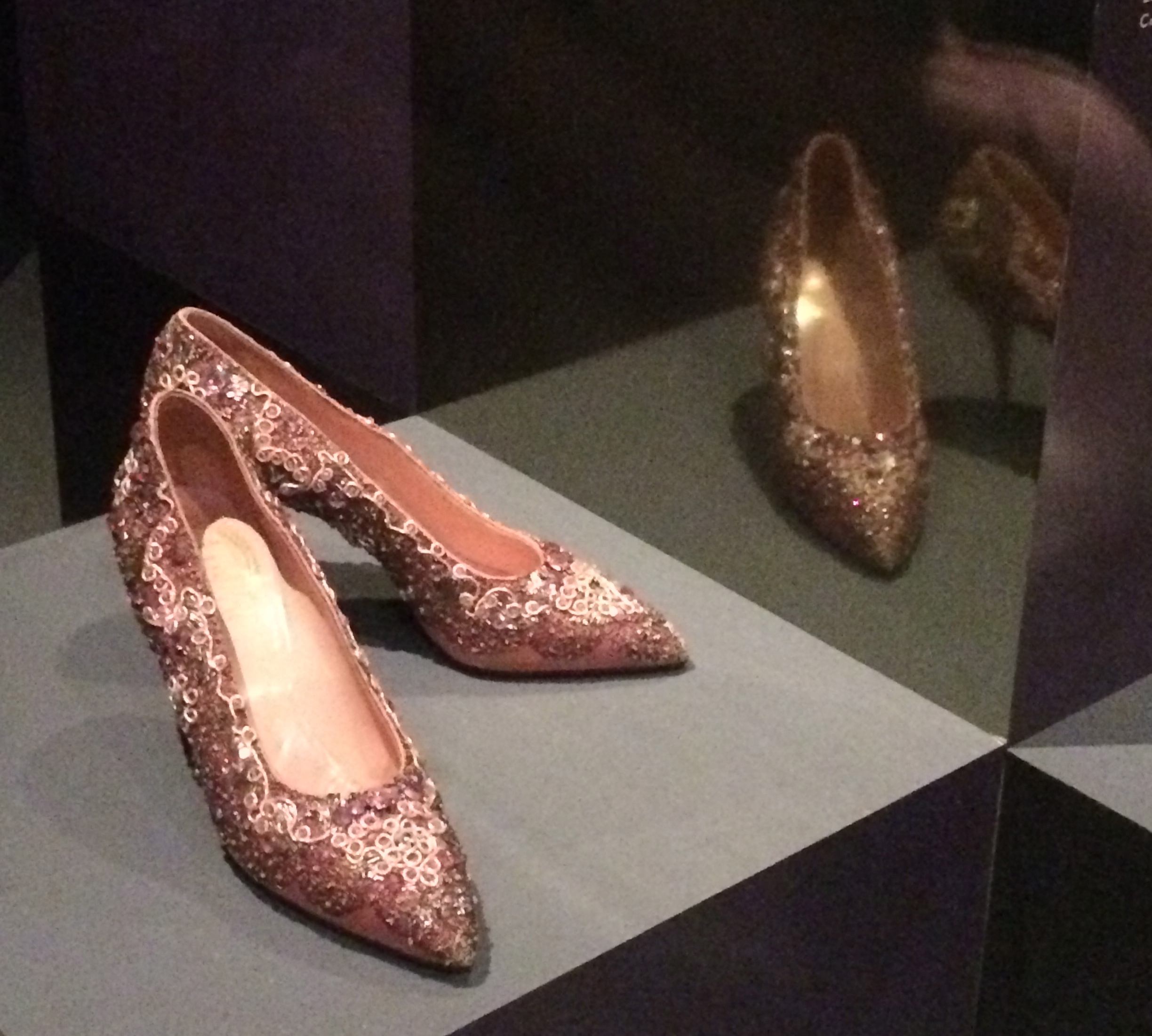 Christian Dior Roger Vivier shoes
