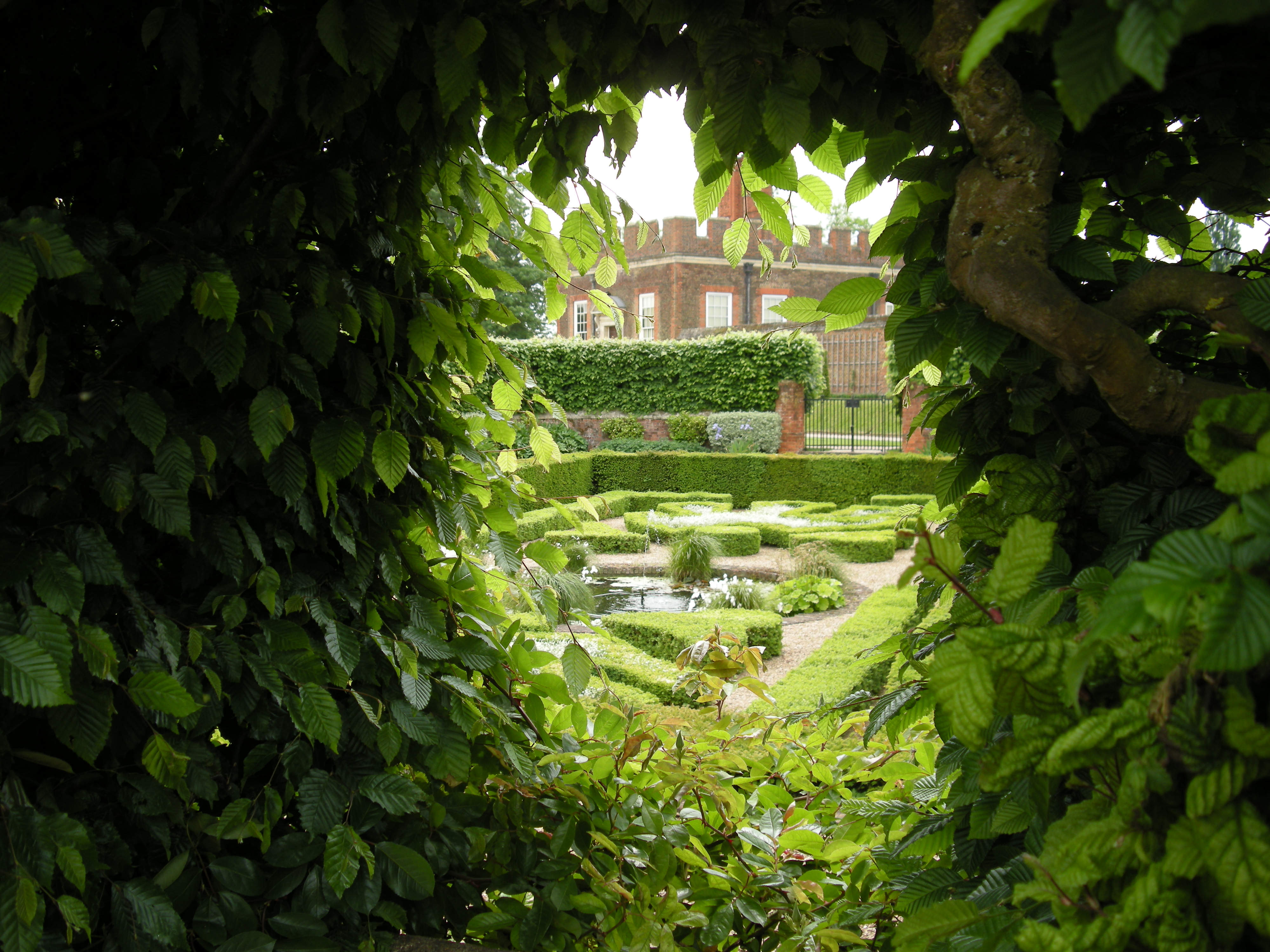 Roses In Garden: Glorious Georges At Hampton Court Palace